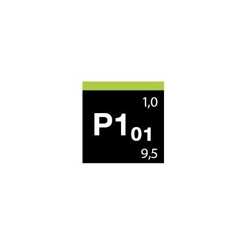 Lack-Polish grün P1.01 Koch Chemie - auto detailing, środki dla myjni samochodowych - 1 Lakiery samochodowe Debeer, Detailing Ko
