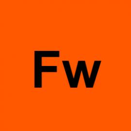 fleckenwasser1l